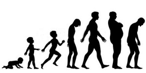 logo silouhette evolution